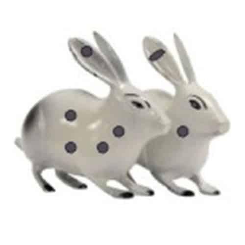 Vastu Sarwasv - Brass Rabbit Pair