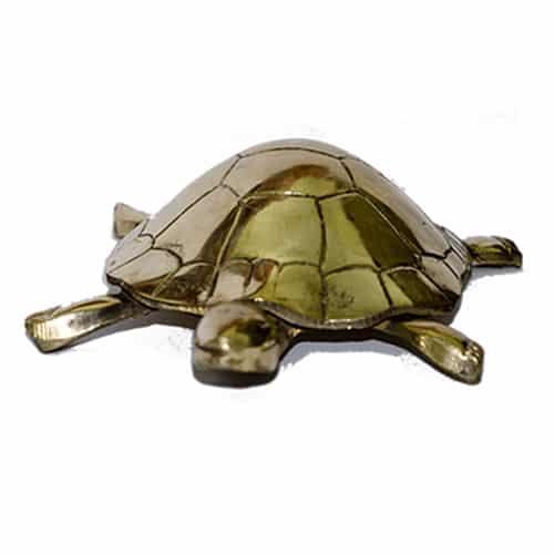 Vastu_Sarwasv_Brass_Tortoise_001
