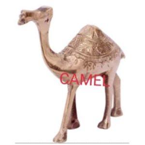 Vastu_Sarwasv_Camel_001